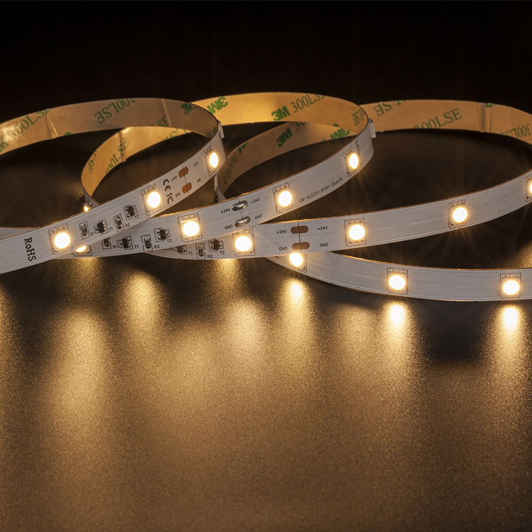 SMD5050 30leds/m DC24V LED strips(Non-waterproof)