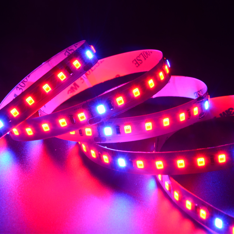 SMD 2835 120leds/m DC24V Plant Grow  LED strips