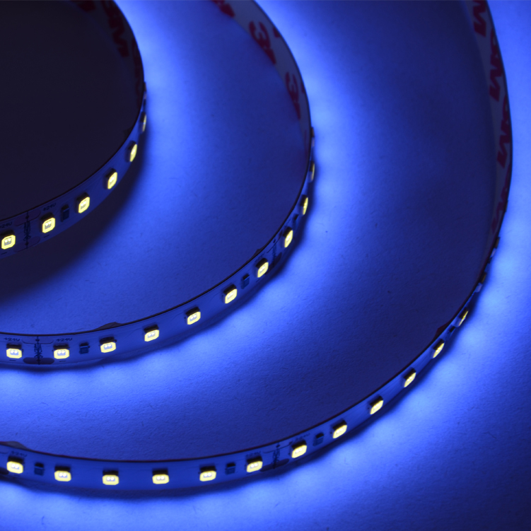 SMD2835 120leds/m DC24V UV LED strips