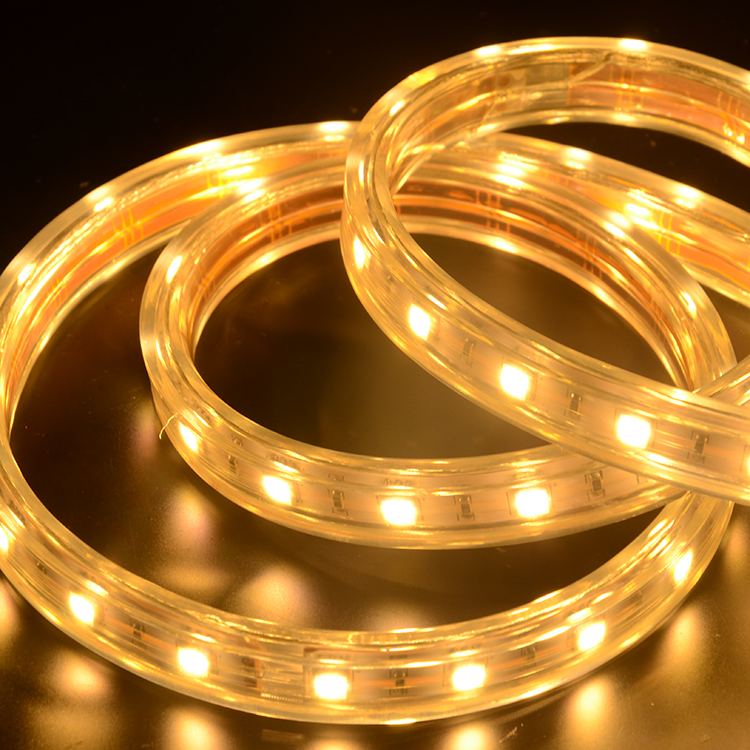 SMD5050 48leds/m HV LED strips (IP67 Waterproof)
