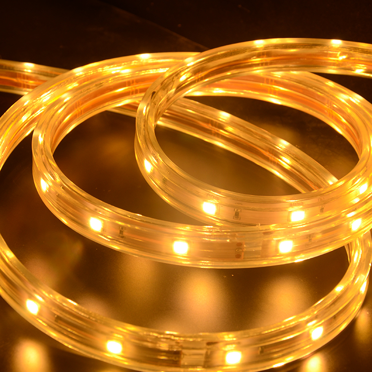 SMD5050 30leds/m HV LED strips (IP67 Waterproof)