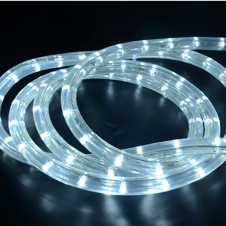 2 Wire Round vertical LED Rope Light