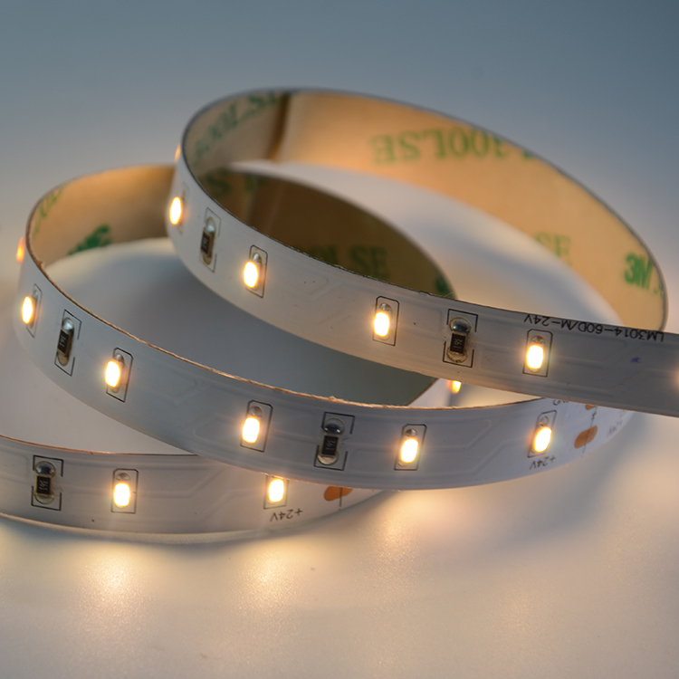 SMD3014 60leds/m DC24V 10MM LED Strips (Non-waterproof)