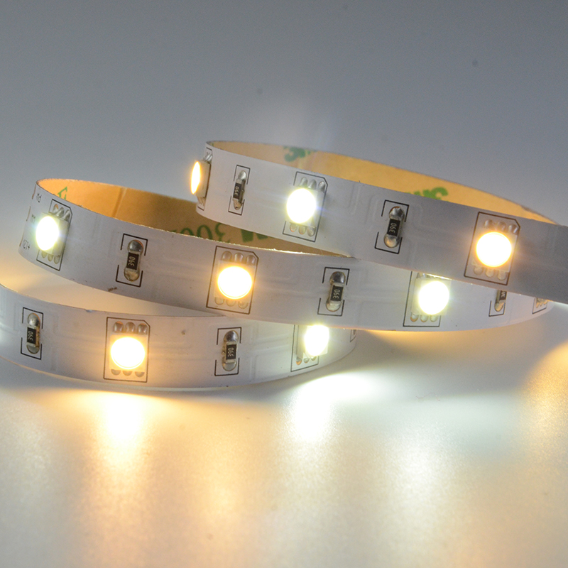 SMD5050 36leds/m DC12V CCT LED strips(Non-waterproof)