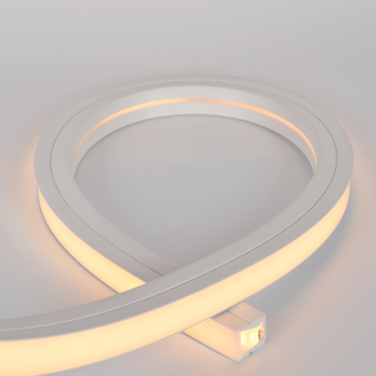 20*20 Silicone Neon Tube Flex Strip SMD2835 120leds/m10mm
