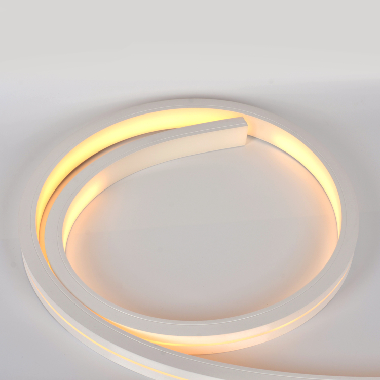 30*20 Silicone Neon Tube Flex Strip SMD2835 120leds/m15mm